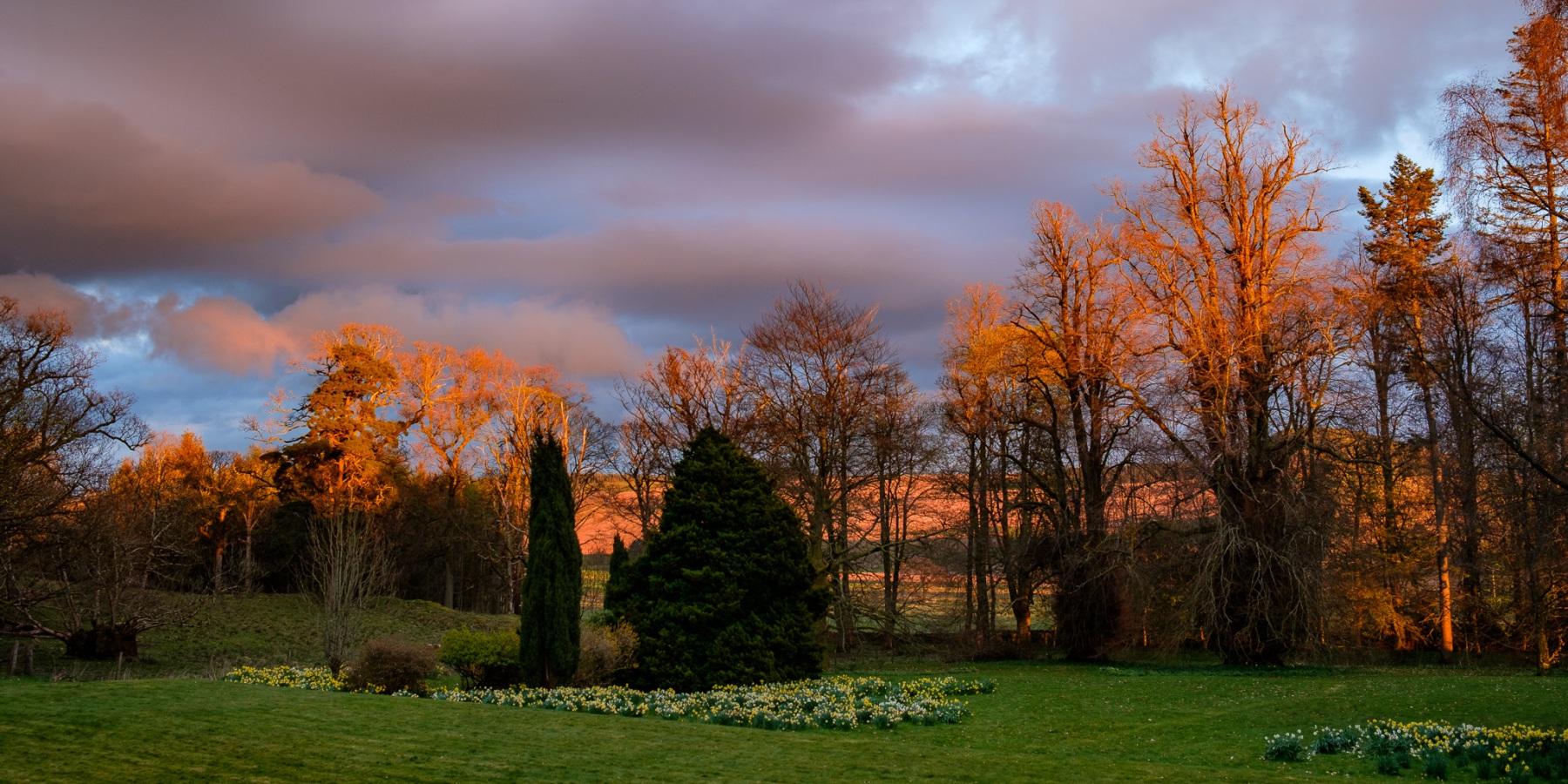 late-evening-sun-1